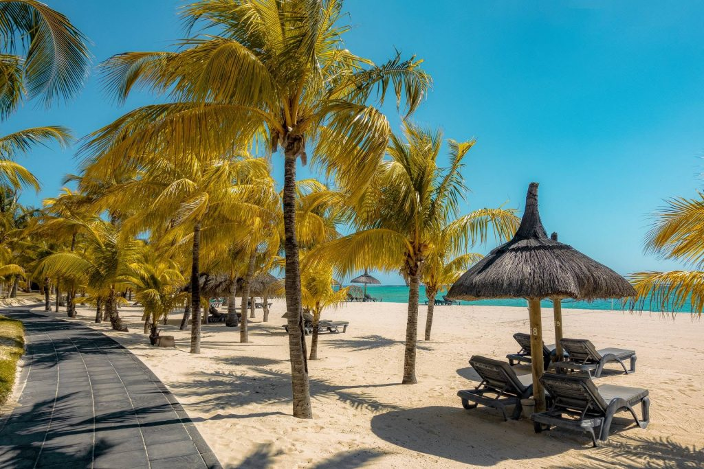 Coconut trees and hut on the beach during daytime