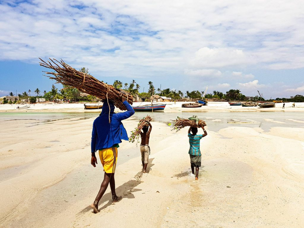 Man and children carrying woods on beach side