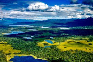 aerial view of denali national park, alaska